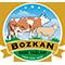 logobozkan